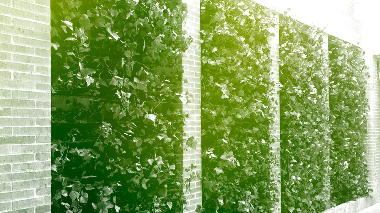 Arquitectura m s verde jardines verticales for Imagenes de jardin vertical